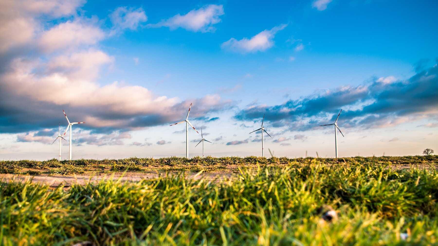 Europese klimaatwet mijlpaal in strijd tegen klimaatverandering